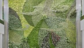 green wall 1 IM1779_10_CreditMerleProsofsky