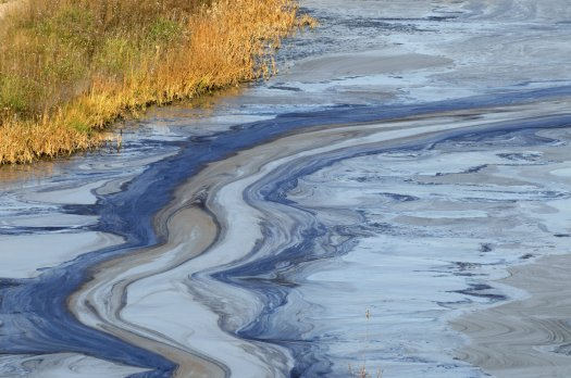 Oil spills have plagued the Gulf Coast, but new technology could help the clean up efforts.