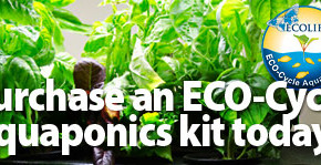 ECO-Cycle-kit-mini-banner