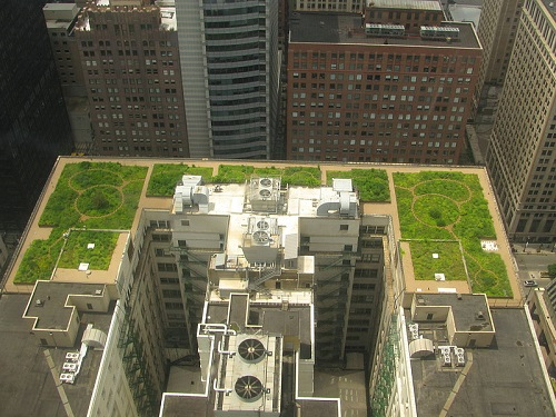 Guest Post: Green Roofs Boost Efficiency of Buildings and Photovoltaic Panels