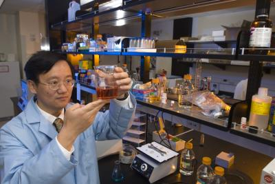 Percival Zhang, an associate professor of biological systems engineering in the Virginia Tech College of Agriculture and Life Sciences and the College of Engineering, has developed an inexpensive, environmentally friendly way to extract hydrogen from plants, a development that could drive the hydrogen fuel cell market. Credit: Virginia Tech