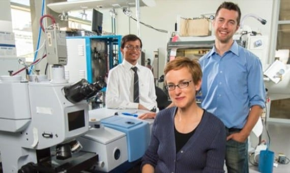 UAlberta researcher Jillian Buriak (center) worked with post-doctoral fellows Erik Luber (right) and Hosnay Mobarok to create nanoparticles that could lead to printable or spray-on solar cells. Image Credit: University of Alberta