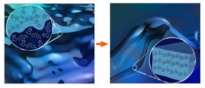 polymer blend morphology 63529_web