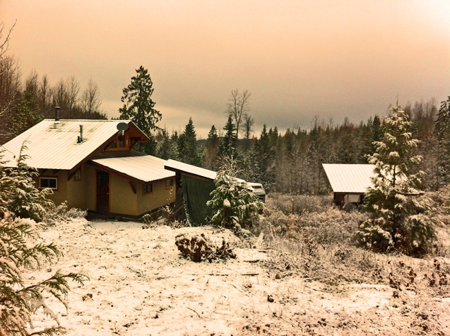 Light Clay Infill cabin in the winter
