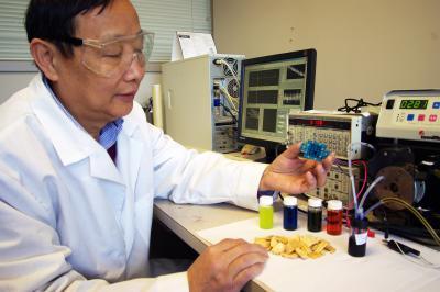 Biomass fuel cell professor 68845_web