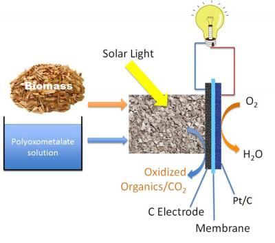 biomass fuel cell schematic 68846_web
