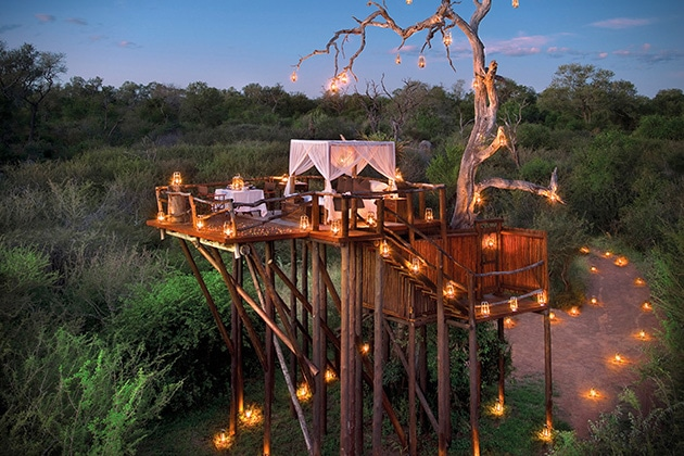 Lion-Sands-Game-Reserve-Treehouse-in-South-Africa