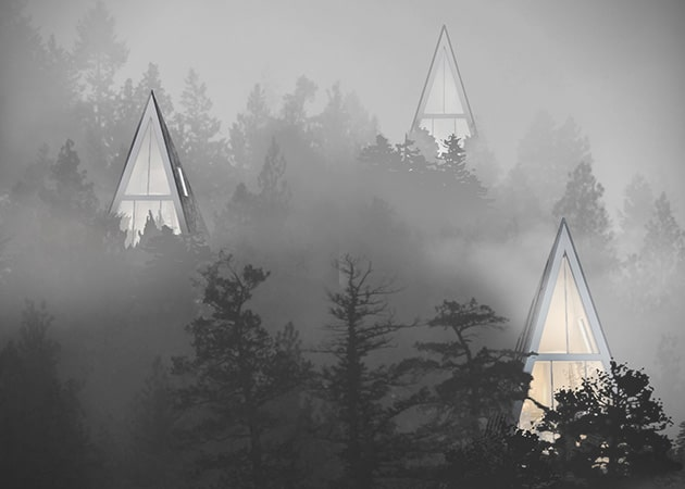 Sustainable-Pine-Tree-Shaped-Houses-1