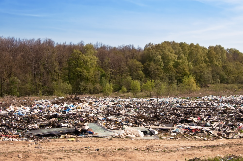 landfills dump-green forest
