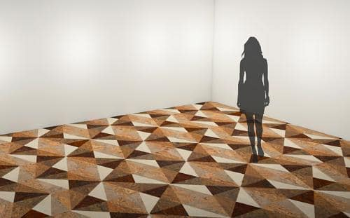 Cork Flooring Design Compeion Winner
