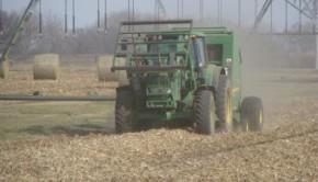corn stover harvest 71995_web