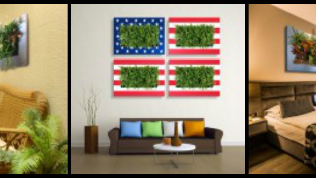 Green walls made with LivePicture