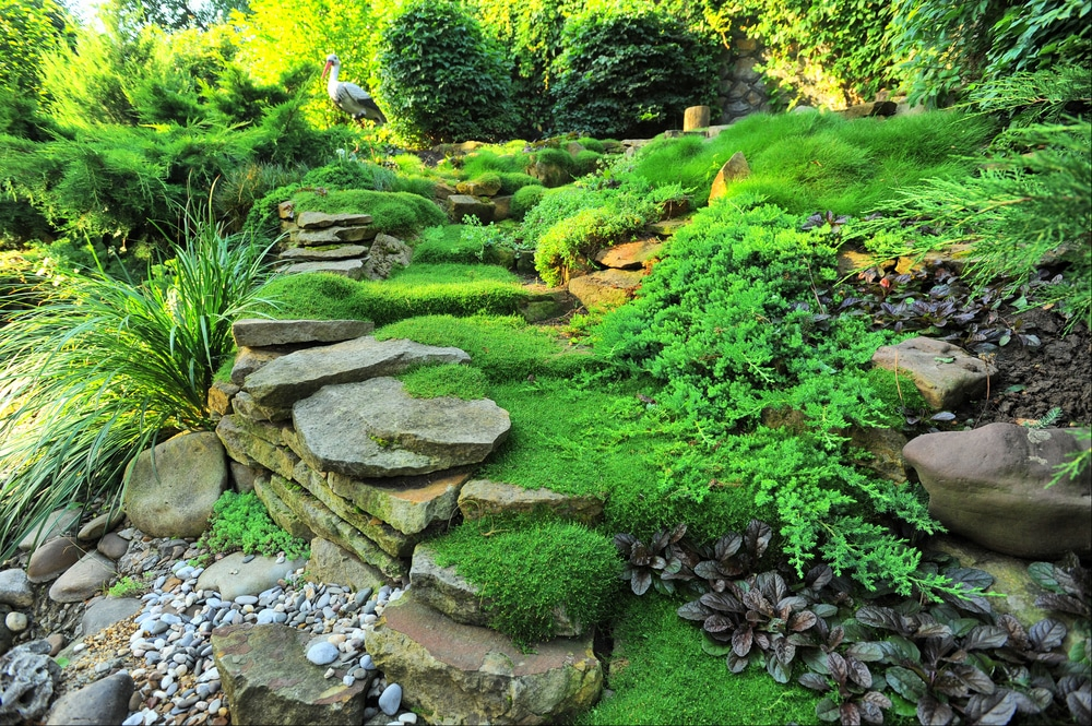 7 Principles Of Water Conscious Landscaping Green Building