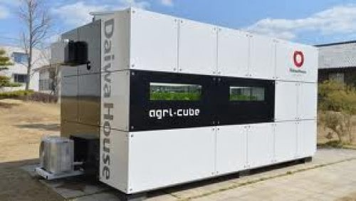 Japanese Agri Cube Can Grow Large Amounts Of Vegetables On
