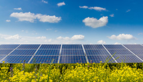 solar-panels-and-flowers-shutterstock_178694141