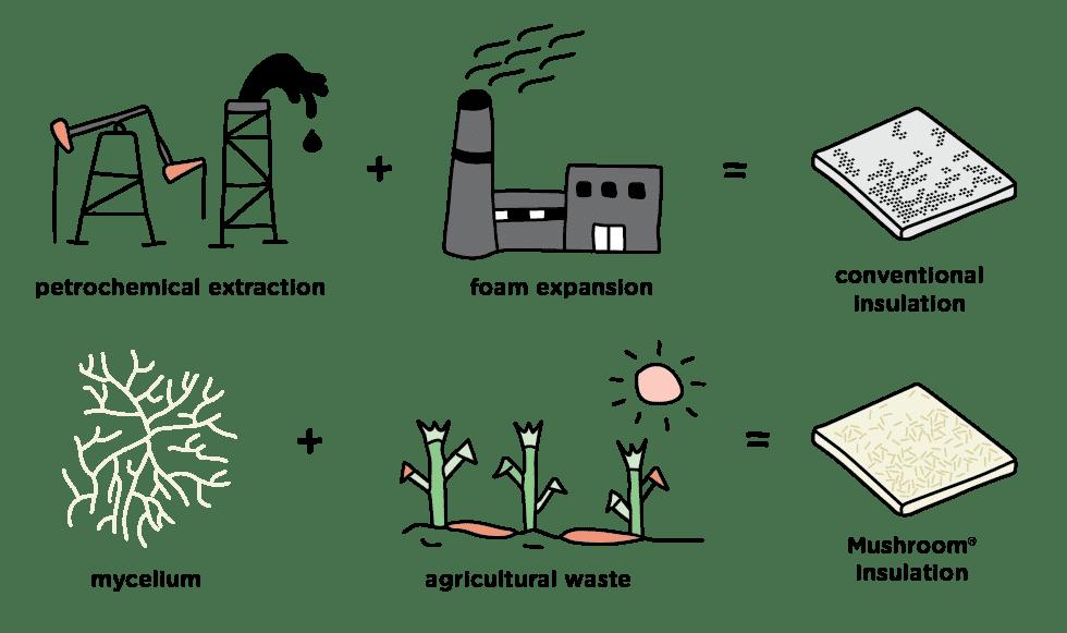 ecovative process