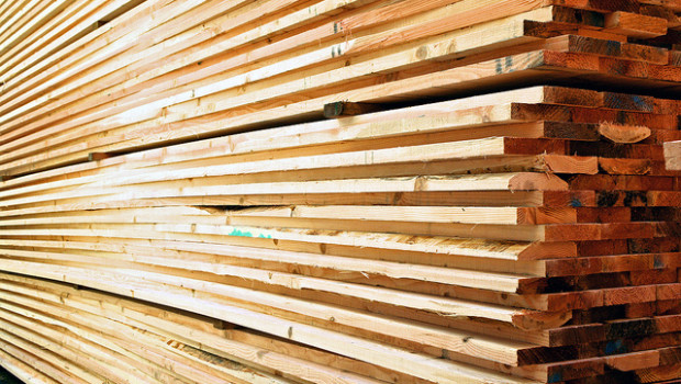 Sustainable Forestry Initiative lumber