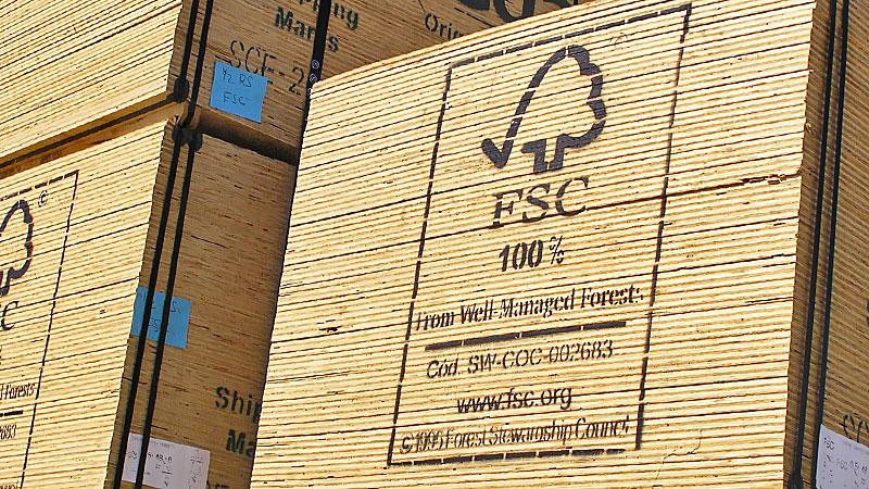 FSC-plywood
