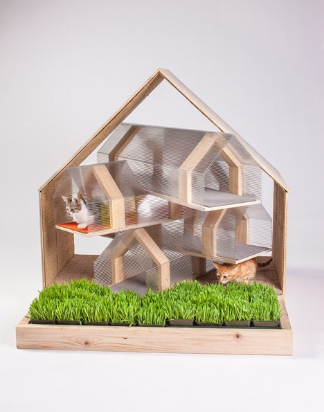 Cat House design by HOK