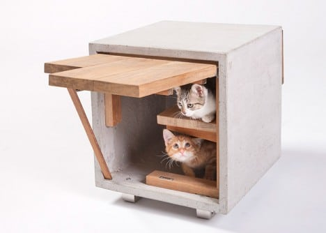 Cat house design by Standard Architecture