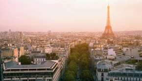 Rooftops in commercial zones in France must now be covered in plants or solar panels according to a new law. Photo via Shutterstock