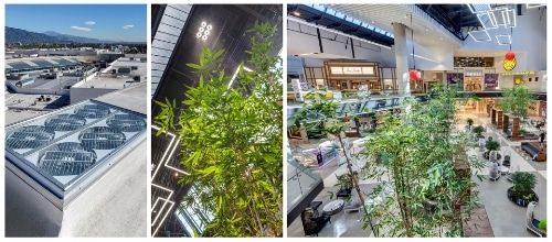 SunBeamers reflecting natural light onto living trees in a shopping center atrium. (PRNewsFoto/SunCentral)