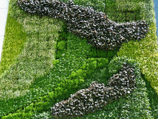 Green wall at entrance to Prudential Tower in Newark, NJ