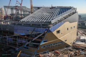 Vikings ETFE & cane IMG_6142