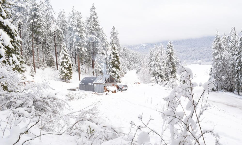 The cheap off-grid cabin sits in the beautiful, and cold, Pacific Northwest of the United States. It measures 10 ft x 12 ft.