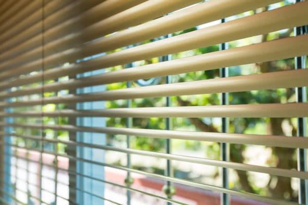Window Blinds Open
